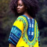 African fashion : nice dress and natural hair